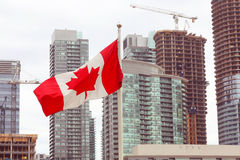 Canadian flag in front of beautiful city cityscape modern buildings Stock Image
