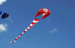 Canadian flag kite Royalty Free Stock Image