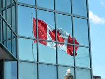 Canadian flag. Reflection Stock Photography