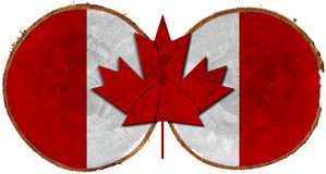 Canadian Flag on Section of Tree Trunks Stock Image