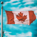 Canadian Flag Square Stock Images