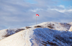 Canadian flag on top of a hill. Canadian flag blowing on top of snow covered hills Stock Images
