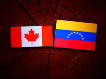 Canadian. Flag with Venezuelan flag on a tree stump isolated Royalty Free Stock Image