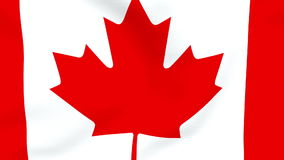 Canadian Flag waving background stock video footage