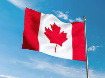Canadian flag waving in blue sky Royalty Free Stock Images