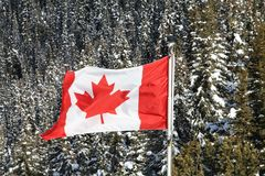 Canadian flag waving in the sky Royalty Free Stock Images