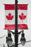 Canadian flag  in the wind Royalty Free Stock Photography