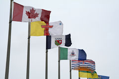 Canadian Flags. Various Canadian Flags stock image