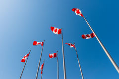 Canadian flags waving over blue sky Royalty Free Stock Photography