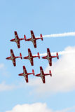 Canadian Forces Snowbirds Stock Images