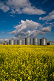 Canadian grain bins Royalty Free Stock Image