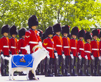 Canadian Guards at Quebec Citadel. Canadian Guards and their goat mascot conducting daily drills and changing of the guard at the Citadel in Quebec City, Canada Stock Image