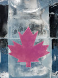 Canadian Ice Royalty Free Stock Images