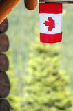 Canadian ingredients. Lumber,flag (maple leaf) and pine Royalty Free Stock Photography