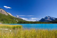 Canadian Landscape. Banff National Park. Beautiful Canadian Landscape: Lake with turquoise blue water, Rocky Mountains and Clear Sky. Photo is taken on sunny day Stock Image