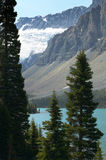 Canadian landscape with Bow lake and forest. Alberta. Canada Royalty Free Stock Images