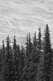 Canadian landscape with glacier. Icefields parkway. Alberta. Can Stock Photo