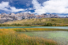 Canadian Landscape. Jasper National Park, Alberta. Beautiful Canadian Landscape: Swampy Talbot Lake, Rocky Mountains and Cloudy Sky. Photo is taken in Jasper Stock Photos