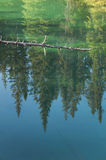 Canadian landscape with lake and forest. Jasper.  Royalty Free Stock Photography