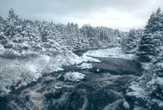 Canadian landscape in winter stock images