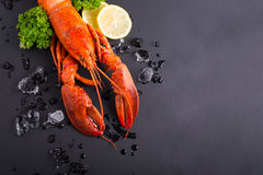 Canadian lobster food Royalty Free Stock Photo