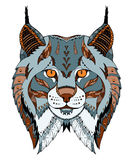Canadian lynx head zentangle stylized, vector, illustration, pat Stock Image