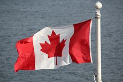 Canadian Maple Leaf Flag Stock Image