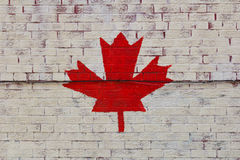 Canadian Maple Leaf Royalty Free Stock Images
