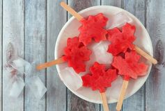 Canadian maple leaf watermelon pops on a white plate against wood. Canadian maple leaf watermelon pops on a white plate against a rustic old wood background Stock Images