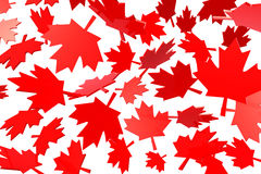 Canadian maple leafs autumn leaves. Flag symbol 3d illustration Royalty Free Stock Photo