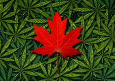 Canadian Marijuana Concept Stock Photography