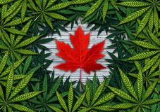 Canadian Cannabis And Marijuana. Canadian marijuana concept and Canada cannabis law and legislation social issue as medical and recreational weed usage icon as a Royalty Free Stock Image