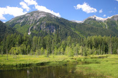Canadian Meadow Royalty Free Stock Photos