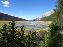 Canadian Medicine Lake in Jasper National Park. In Alberta Stock Photo