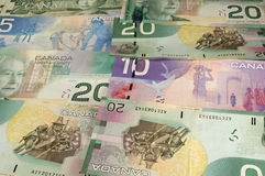 Canadian Money. As background layer Stock Photography