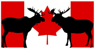 Canadian Moose. Illustration of moose silhouette on Canadian flag background Stock Image