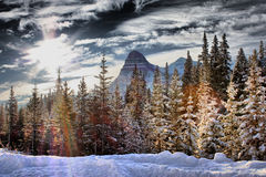 Canadian mountain in front of a forest of trees Stock Photo