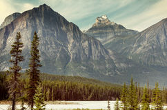 Canadian mountains Royalty Free Stock Image