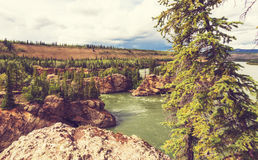 Canadian mountains Royalty Free Stock Photo