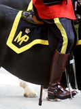 Canadian Mountie Stock Images
