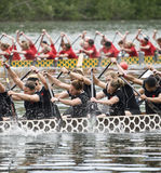Canadian National Womens Premier Dragon Boat. Racing at the21st TELUS Toronto International Dragon Boat Racing Festival at Toronto Island Stock Images