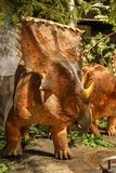 Canadian Nature Museum dinosaurs exhibition royalty free stock photo