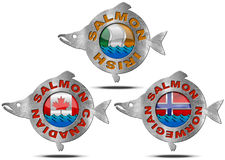 Canadian Norwegian Irish Salmon - Icon Stock Photos