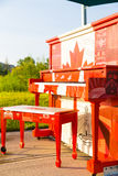 Canadian Outdoor piano Royalty Free Stock Photography