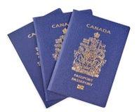 Canadian passports Stock Photos