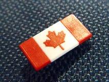Canadian pin under natural sunlight Stock Image