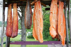 Canadian red salmon strips hung to smoke on a rack outdoor royalty free stock image