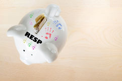Free Canadian RESP Savings Concept Royalty Free Stock Photography - 33958207
