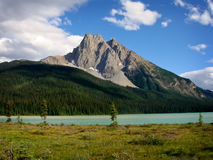 Canadian Rockies. A Beautiful View of the Canadian Rockies royalty free stock photography