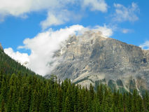 Canadian Rockies. A View of the Canadian Rockies on a Sunny Day royalty free stock images